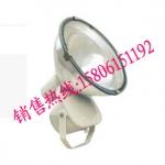 CNT9170防震投光灯 一体式防震投光灯250W