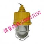 BAD83防爆高效节能无极灯吊杆式