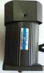 6W小型感应式电动机