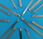 自锁扎带 不锈钢自锁扎带 电缆自锁扎带