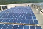 供应工商业分布式光伏发电 太阳能光伏电站 草坪灯