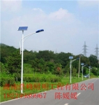 湖南长沙景观灯太阳能景观灯批发价格优惠